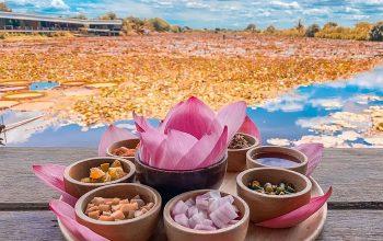 Chốn tiên cảnh trần gian Hồ Sen Đỏ Thái Lan - Điểm check-in tuyệt đẹp