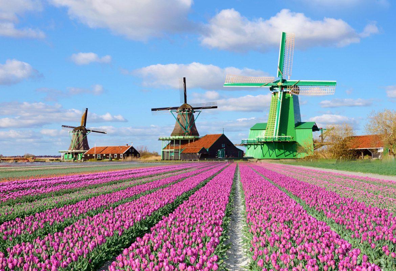 Top các thành phố đẹp nhất nên ghé tham quan khi đi du lịch Hà Lan
