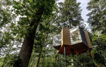 Treetop House ngôi nhà trên những ngọn cây